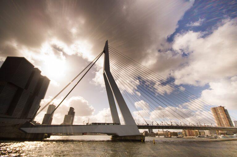 bridge, rotterdam, erasmus